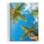 caderno-univers-capa-flexivel-1×1-96fls-brasil
